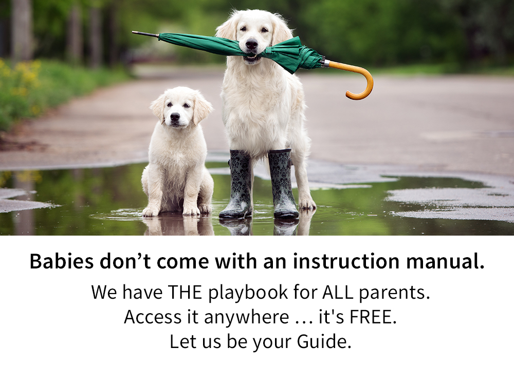 We have THE playbook for all parents.
